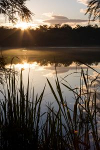 Lake Alice Sunrise